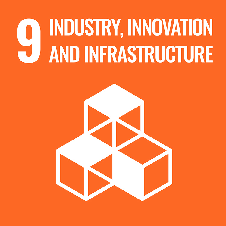 9: INDUSTRY, INNOVATION, AND INFRASTRUCTURE